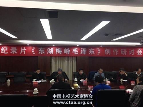 2014(纪录片《东湖梅岭毛泽东》创作研讨会在京举办)